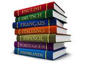 cizojazyčné slovníky
